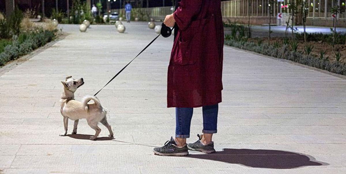 واکنش پلیس به ویدئو درگیری با صاحب یک سگ در تهران